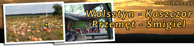 Wolsztyn - Przemęcki Park Krajobrazowy - Śmigiel