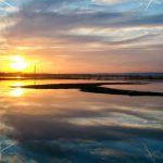 Rogalinek – olbrzymie rozlewisko wygląda jak jezioro
