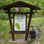 Zabytkowy park w Porażynie