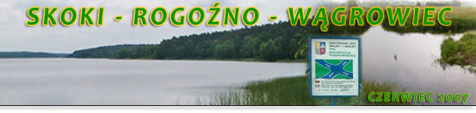 Skoki - Rogoźno - Wągrowiec - Skoki