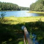 Jezioro Duży Sucharek