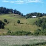 Pagórki koło Łopuchowa