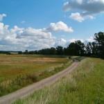 Jedziemy wzdłuż wału. Ładne widoki na prawo i lewo :)