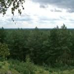 Łysa Góra. Widok w kierunku Książa Wielkopolskiego