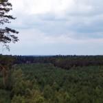 Łysa Góra. Widok w kierunku Wielkopolskiego Parku Narodowego.