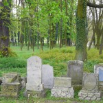 Stary cmentarz poewangelicki.