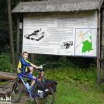 W rezerwacie Kadyński Las