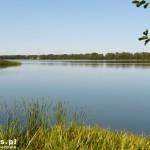 Pszczew. Jezioro Pszczewskie