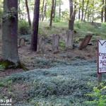 Trzciel. Cmentarz Żydowski