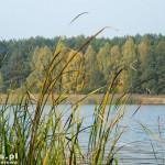 Jezioro Kruteckie. Cisza i spokój idealne miejsce na wypoczynek
