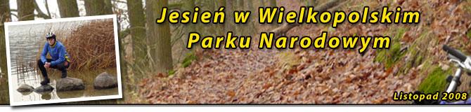 Jesienny wypad do Wielkopolskiego Parku