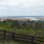 Widok ze wzgórza Zielonka
