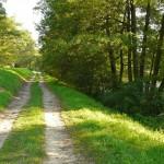 NSR – czyli nadwarciański szlak rowerowy zwany też wałowym