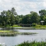 Białowieża. Park pałacowy