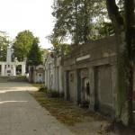 Cmentarz komunalny w Mogilnie. Jedna z najstarszych nekropolii w Polsce.
