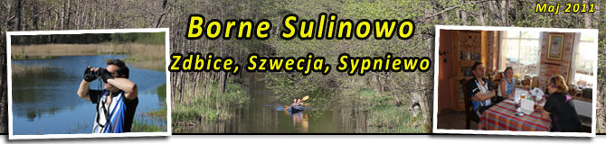 Borne Sulinowo, Zbice, Szwecja, Nadarzyce