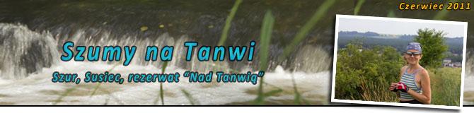 Szumy na Tanwi