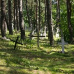 Za Lubyczą Królewską – na cmentarzu zachowane stare nagrobki.