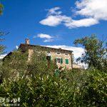 Istryjskie 'latyfundium'