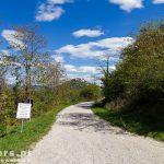 Motovun – leży na wzgórzu (277 m n.p.m.) na południe od rzeki Mirny