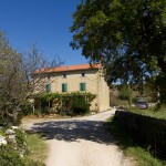 Piaskowe elewacje, czerwona dachówka i zielone okiennice to typowy wiejski dom