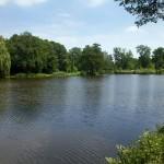 Park krajobrazowy w Miłosławiu o pow. 38 ha
