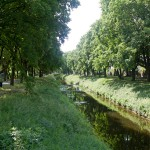Rzeka Wrześnica