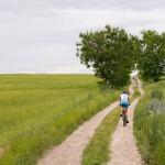 Na szlaku do Żnina