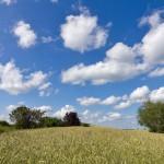 Pałuckie krajobrazy