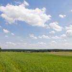 Pniewy, w dolinie Jezioro Pniewskie z pływającą wyspą