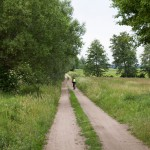 W drodze do Kopaszewa mijamy grodzisko. Za drzewami Rów Wyskoć