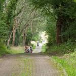 Droga rowerowa z Garz do Zirchow