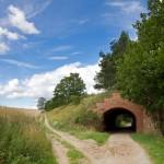 Tunel na drodze rowerowej