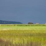 Wyspa Karsibór, w tle wzgórze Zielonka i kościół w Lubiniu