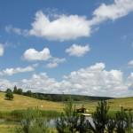 Mijamy pagórkowaty rolniczy krajobraz