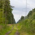 Na czerwonym pieszym z Łunowa