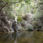 Wzdłuż potoku Rabackiego