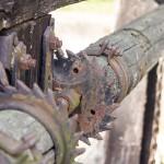 Przepust – wiele spośród urządzeń hydrotechnicznych, służących do regulacji gospodarką wodną na stawach, należy do zabytków techniki i pochodzi jeszcze z XIX wieku