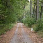 Na 17 km ścieżki rowerowej tras a dawnej kolejki wąskotorowej Sułów- Milicz – Grabownica