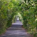 Droga przez groblę