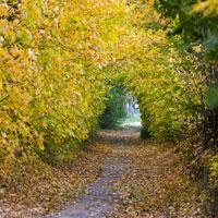 Jesień w WPN