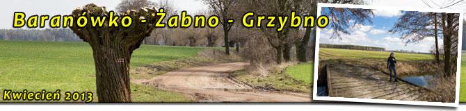 Baranówko, Żabno, Grzybno.
