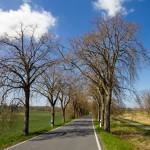 Pomimo, że niewiele jeździ tu samochodów, dla rowerzystów jest wydzielona ścieżka