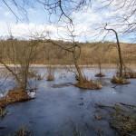 Jezioro Budzyńskie