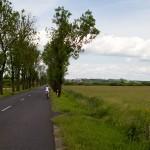 Wszystkie drogi przez dolinę Noteci wyglądają podobnie, zbudowane na groblach