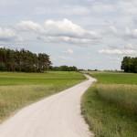 W drodze do Falmierowa