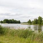 Jezioro we Falmierowie