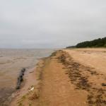 Piaszczyste plaże Bałtyku w drodze do Haapsalu