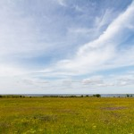 Wybrzeże południowo-zachodniej części Saaremy