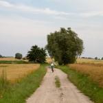 W drodze do Kostrzyna